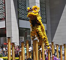 Lion Dance by j0sh