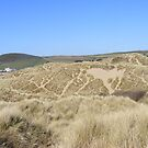 twisting lines- croyde bay sand dunes by harryland93