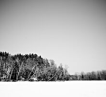 Black and White Nature by Trenton Purdy