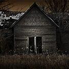 Darkness Taking Dawn by Rodney  Harvey