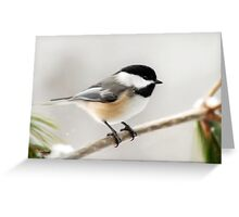 Winter Chickadee Painting Greeting Card