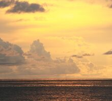 Golden morning sky over the Bahamas Sea by Roupen  Baker