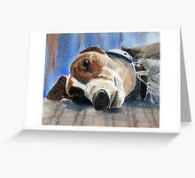 Dog days Greeting Card