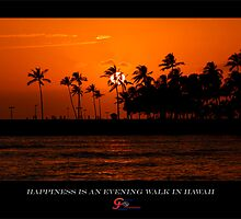 An Evening Walk in Hawaii by capturedjourney
