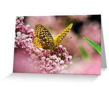 Orange Fritillary Butterfly Greeting Card