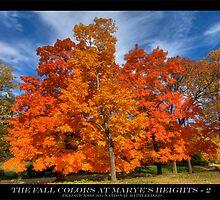 Autumn at the Battlefield by capturedjourney