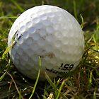 Golf Ball by rhian mountjoy