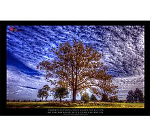 The power of Trees Photographic Print