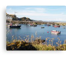 Boats at Mevagissey Canvas Print