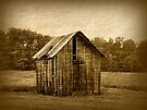 Old Shed by Sandy Keeton