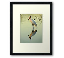 Avian Beauty ~ Part Sixteen Framed Print