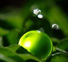Thy Greenish Soul by TriciaDanby