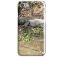 Gator Chillin' iPhone Case/Skin