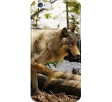 Canyon pack wolf iPhone Case/Skin