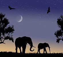 elephants at dawn by Fran E.