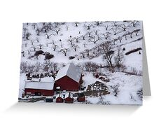 Winter Orchard Greeting Card