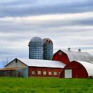 Red Barns Of 3 by Deborah  Benoit