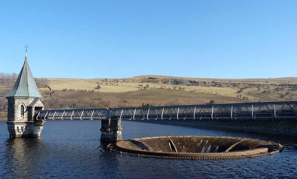 """Spill ove flowr at """"Pontsticill Reservoir"""" Brecon Beacons by wizard327"""