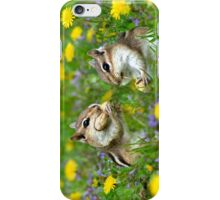 Bountiful Generosity iPhone Case/Skin