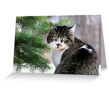 Hazel Eyes and Pine Greeting Card