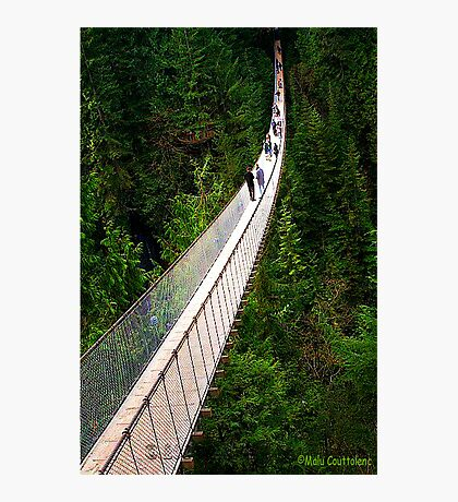 Capilano Photographic Print