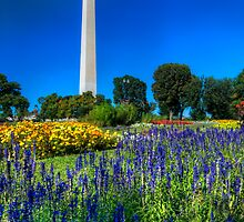 The Washington Monument in Spring by capturedjourney