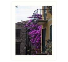 Balconies and Bougainvillaea Art Print
