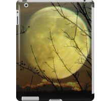 By Moonlight..... iPad Case/Skin