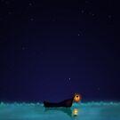 C'est Joli la Nuit by Margybear