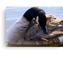 Goose Shapes Canvas Print
