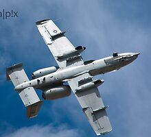 A-10 Belly Up by pandapix