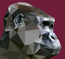 LP Gorilla by Alice Protin