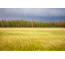 Meadow Motion Blur Photographic Print