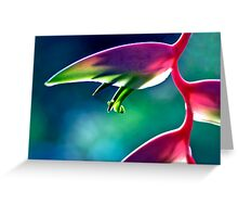 Sexy Pink - heliconia flower Greeting Card