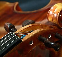 Fine Art Violins by Nick Bland