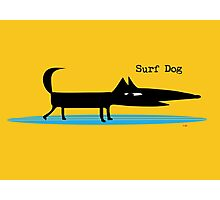 Surf Dog Photographic Print