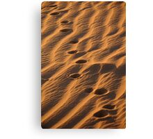 Walk in the Dunes of the Sahara Canvas Print