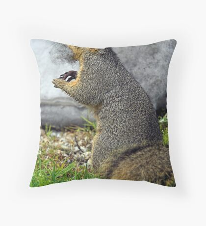 Rabid Squirrel or Stuffing Stealer? Throw Pillow