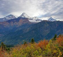 Himalayan Spectacle by Harry Oldmeadow