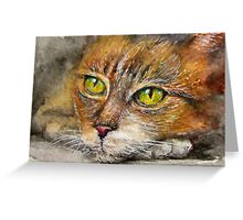 Red cat painting  Greeting Card