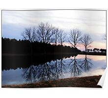 country pond Poster