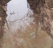 rain  drain  by ebrewton