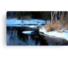Winter Water Wonderland... Canvas Print