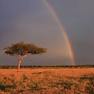Double rainbow over the Masai Mara by Lauren Banks