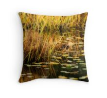 Deer Lake Park Throw Pillow