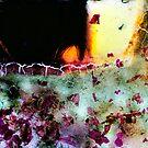 Fragments by smithrankenART