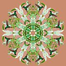 Hummingbird Kaleidoscope  by Tracy Riddell