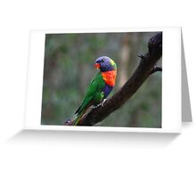 I'm So Gorgeous! Greeting Card
