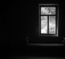 Room with a view, Port Arthur, Tasmania by Elana Bailey