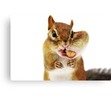"""""""WOULD YOU HAVE a smaller PEANUT?..."""" Canvas Print"""